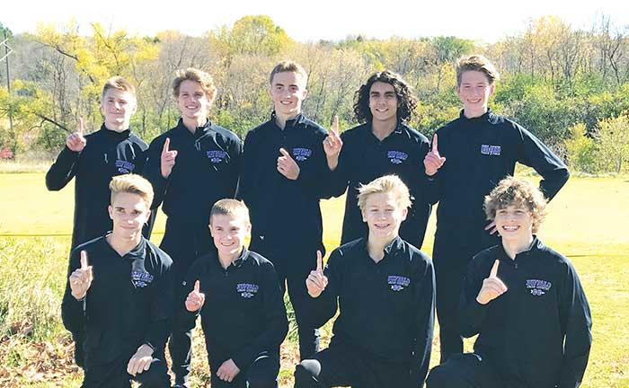 The Buffalo boys' cross country team came in as overwhelming favorites to win this year's Section 2AA championship meet Tuesday, Oct. 13 at Gale Woods Farm in Minnetrista.Seeded No. 1 out of 17 teams, the No. 7 ranked Bison didn't disappoint. A...