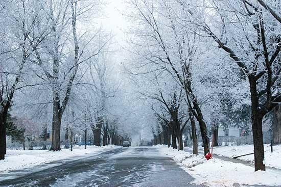 On December 8, the Buffalo Chamber of Commerce seized the opportunity to snap some beautiful pictures of the frost, which visted Buffalo early Saturday morning. Pictured above is Fourth Avenue NW, with a gorgeous display of white canopies over the...