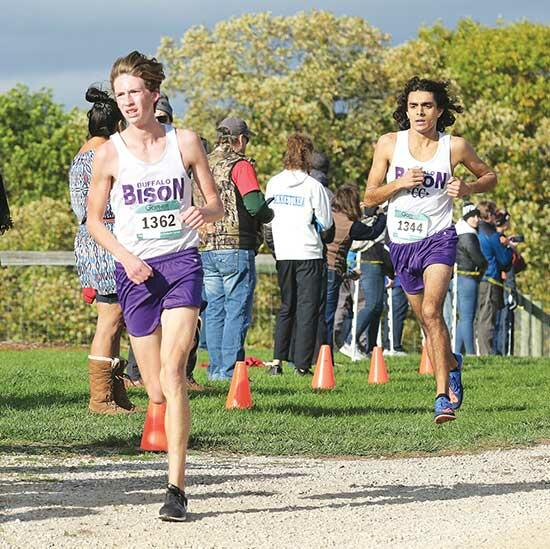 Bison place third; Gregoire, Dorado hit sub-16There were plenty of smiles and celebrations following the Buffalo boys' cross country team's race last Thursday in the Lake Conference finals at Gale Woods Farm in Minnetrista.No, the Bison didn't...